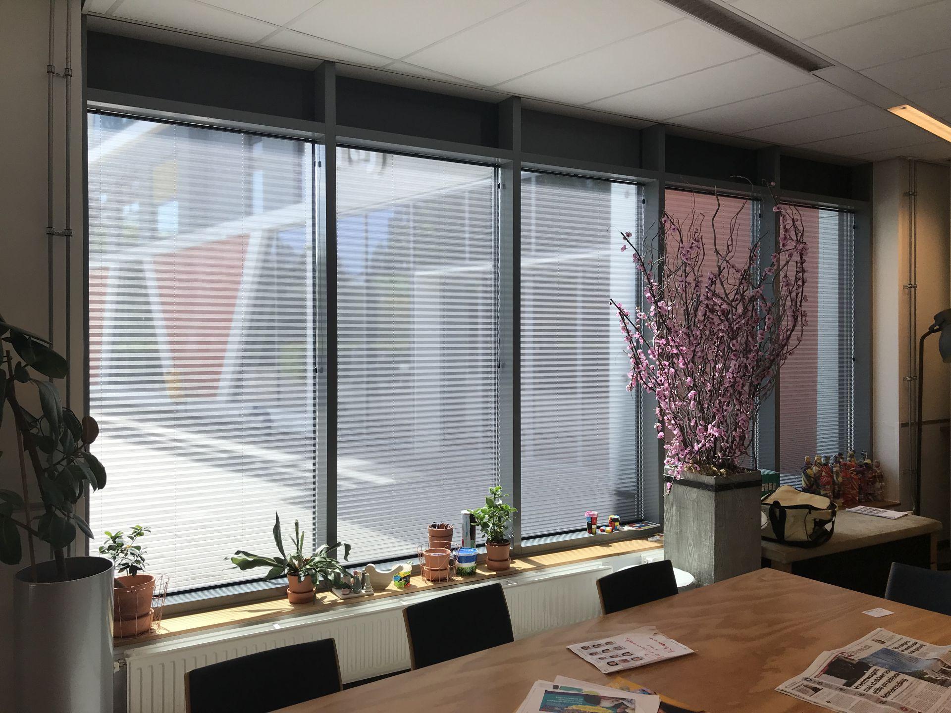 special raambekeding trapezium plissé Twente